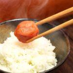 【ご飯に合う梅干し】しょっぱい・すっぱい・昔ながらの梅干しおすすめランキング